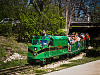 austin-downtown &gt; Miniature train in Zilker park, Austin, Texas