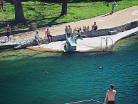 austin-downtown > A man jumps into the pool of Barton Springs in Austin, Texas