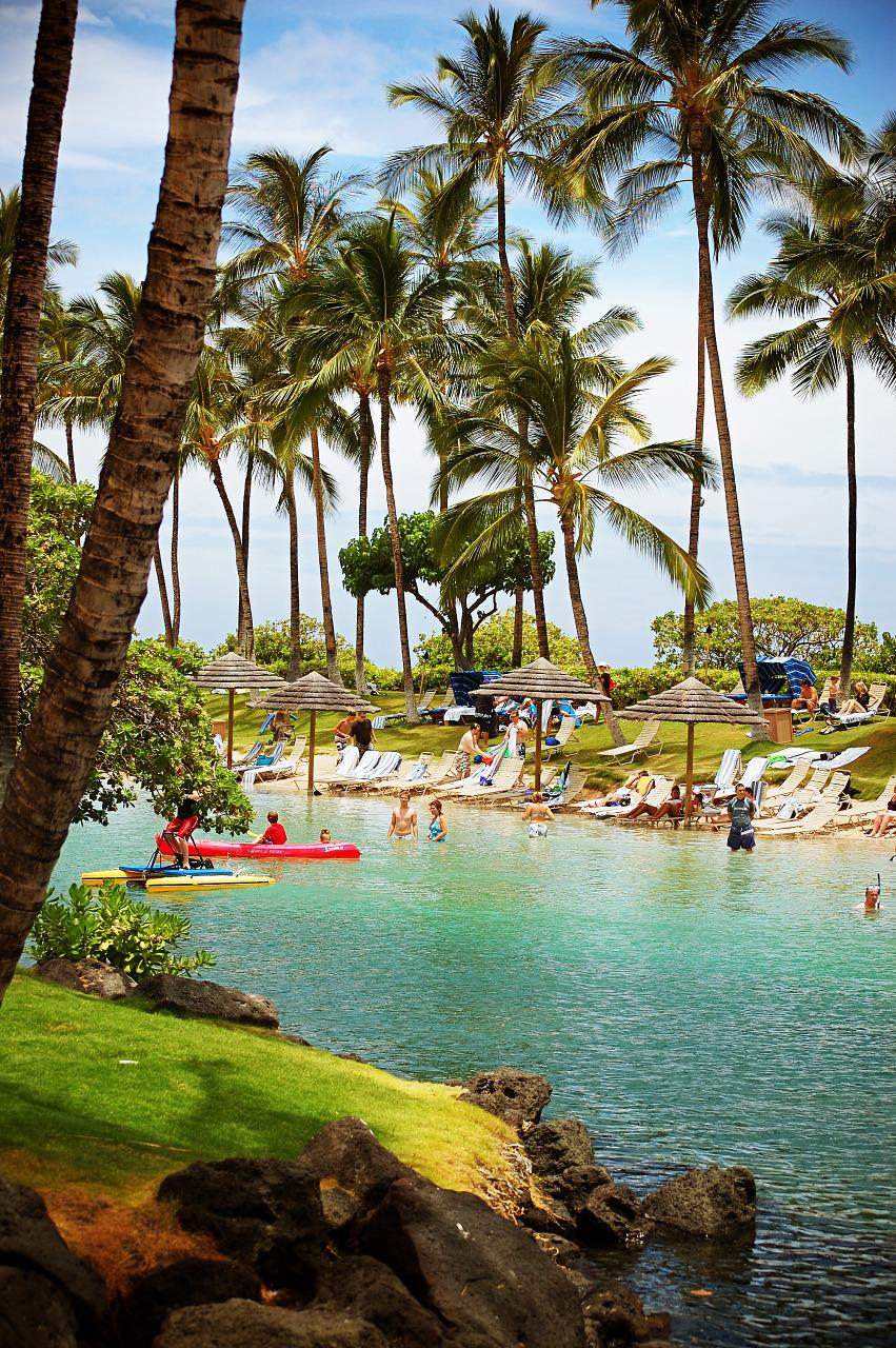 blue lagoon swimmers hilton palmtrees scenery