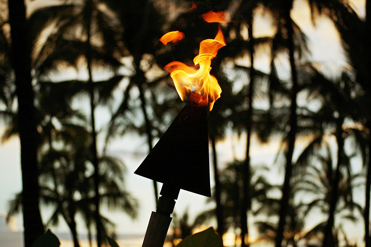Close up of a dancing flame on a torch in front of palm trees at Sunset - Waikoloa