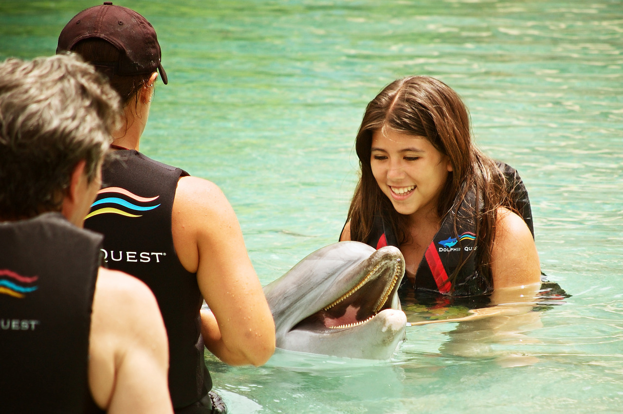 Young girl interacting with the dolphin