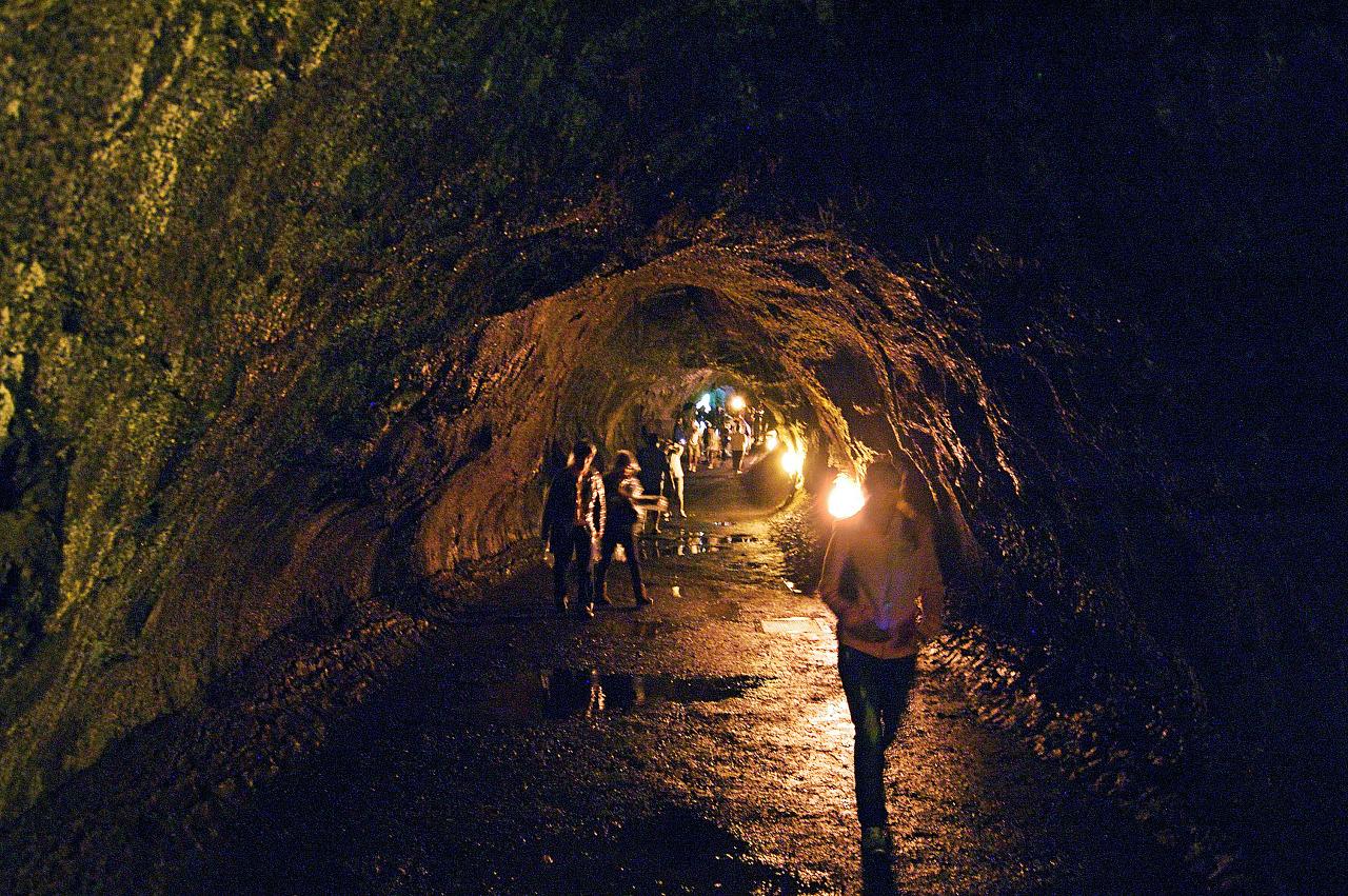 Grotto of the Thurston lava tube, on Big Island Hawaii