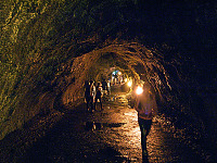 big-island-hawaii > Grotto of the Thurston lava tube, on Big Island Hawaii