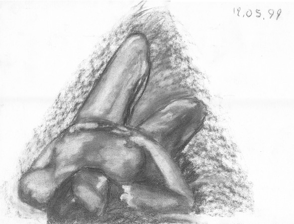 drawing-painting-traditional  > Woman nude from top