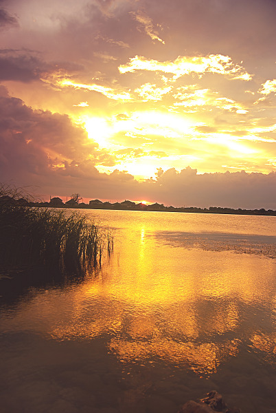 Reflection on the Lake Pflugerville of the Texan sunset