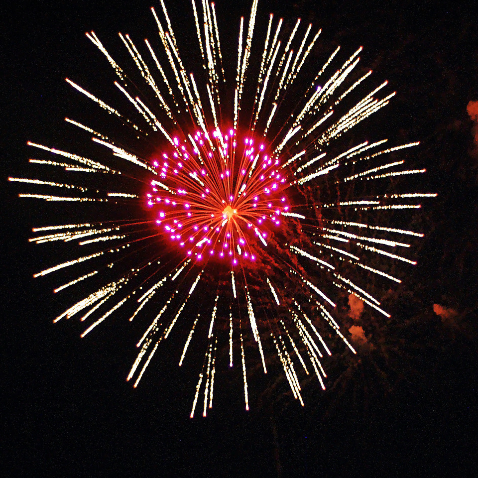 Large fireworks explosion with pink center flower