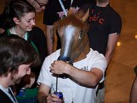 quakecon-dallas-2012 > Horse waiting for a talk at Quakecon 2012