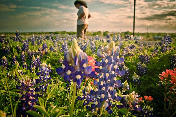 Woman standing in the field of bluebonnet