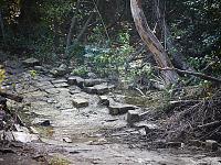 walnut-creek-park-austin > Flooded Bridge